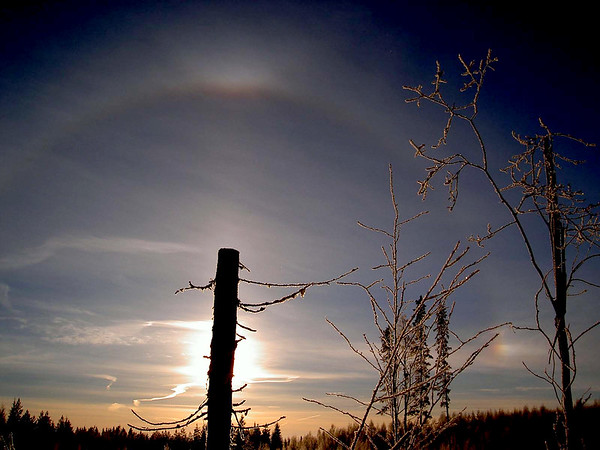 22° halo, upper tangent arc, sundog, and sunpillar