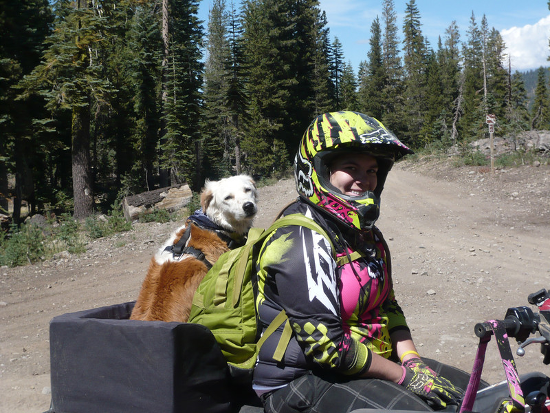 I ran into a couple of friends near Meadow Lake on the way from Lacey Benchmark to Pt. 6522 (W6/NS-273). They brought along their dog who enjoys ATV riding as much as the rest of us.
