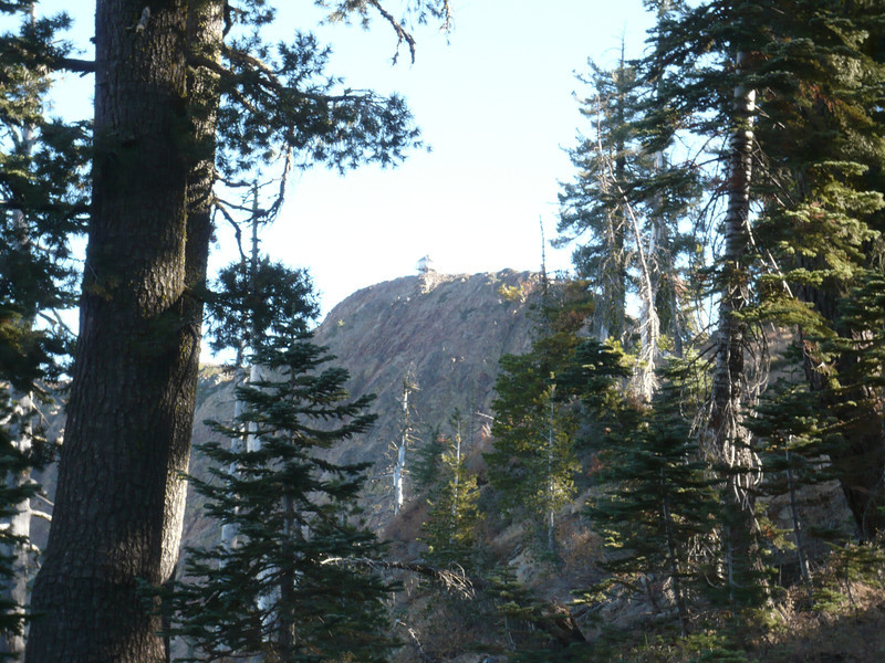Looking up through the trees at the west face of Grouse Ridge with its old lookout tower perched on top.
