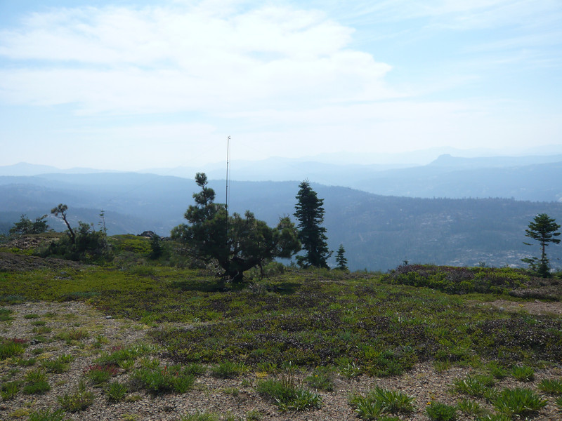 The small fir tree on the right edge of the photo provided a convenient tie-off point for the south end of my 20/40m link dipole.