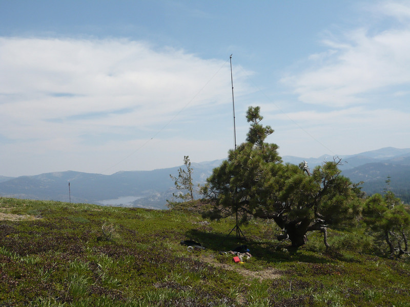 I used my hiking pole to support the north end of the antenna.
