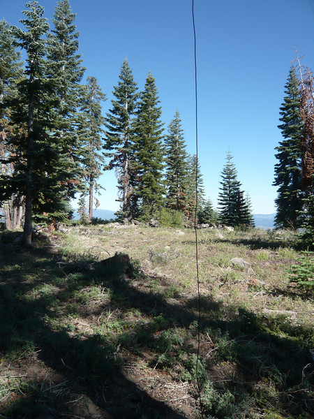The point I deemed to be the summit is near the trees that are behind my RG-58 coax hanging down. Feel free to deem and proclaim your own summit point, I think we'd need to bring a transit or theodolite to know exactly where it is.