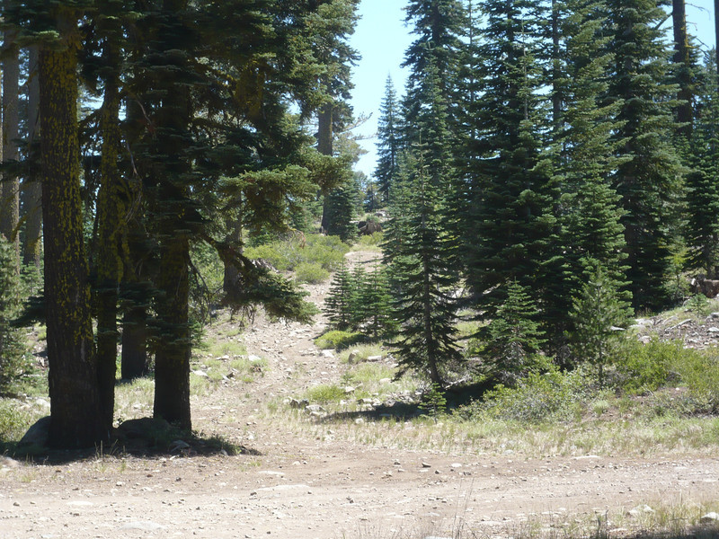 At the northeast corner of the lake is an intersection of two large dirt roads, and across the intersection you will see this 4x4 trail that goes up to the summit of Pt. 7860. Unless you have an ATV, dirt bike or high-clearance 4x4 rig, start your hike here. This spot is approximately 420 vertical feet below the summit.