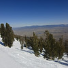 Another shot I took from a ski run, this is looking down into the Minden/Gardnerville area of Nevada.
