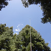 The Jackite pole raised to about 25' with the twinlead from the doublet dangling down towards my operating position. I tied the doublet ends off to trees and oriented the antenna for maximum signal to the east and west.