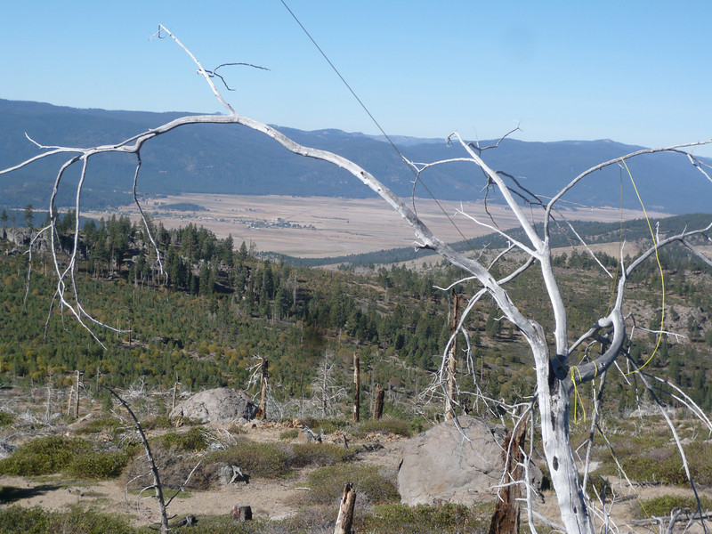 The line ran up and over the boulder, then down to this dead tree on the other side. Sierra Valley and the town of Sierraville are in the background. The camera is looking west-northwest. I secured the south end of the doublet to one of the dead trees on the summit ridge.