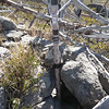 I wedged the bottom of the pole into some rocks and used a short bungee cord (running from the pole to a dead tree) to pull it securely against the rocks. Although it was moderately windy, I didn't need any other guy lines.