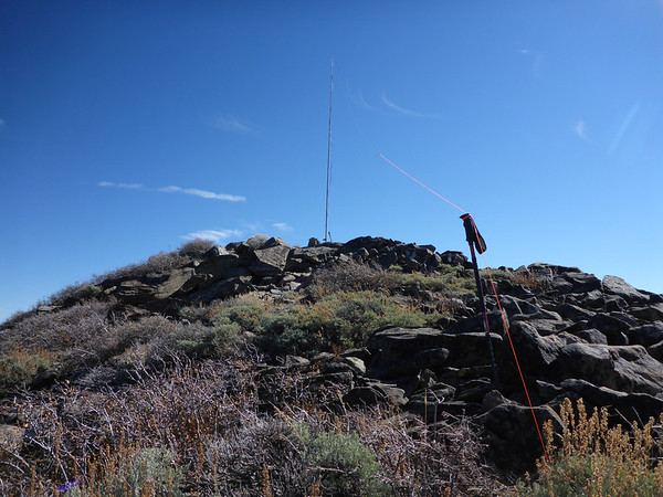 Camping/Remote Antenna Opinions?