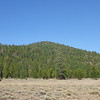 Land Peak in Tahoe National Forest as seen from the large meadow to its southwest along Trosi Canyon Road. There is no trail, reaching the summit requires is a cross-country hike up through the logging slash on its slopes. Brush is either a non-issue or a real big issue depending on the route you choose. Read on for more info on that.