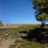"""I tied the south end of my doublet to a larger pine tree. I used that same pine tree to hold up my Buddipole mast and linked dipole <a href=""""http://www.grizzlyguy.com/HamRadio/SOTA-Activation-842012-Signal"""">when I activated the summit for the first time last year</a> using my HB1B."""