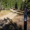 The OHV route begins here, a few hundred feet past the hut.