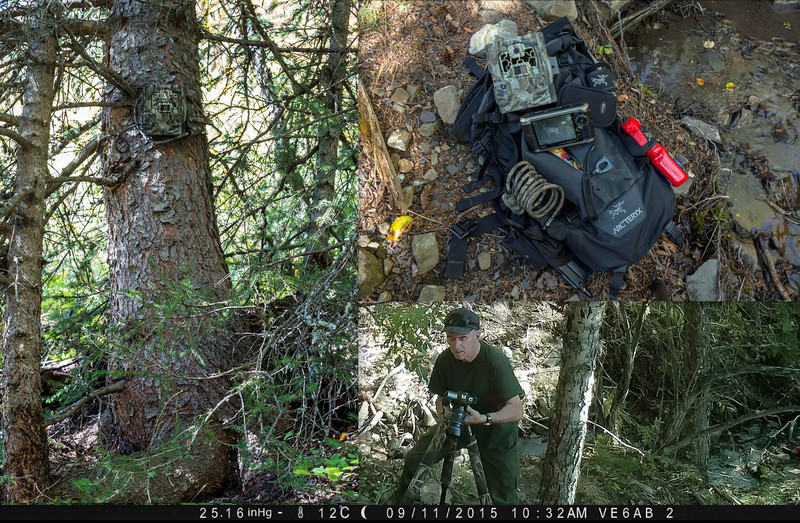 Trail Cam Location
