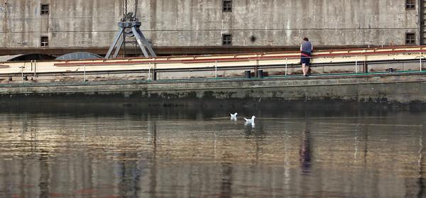 Hamburg Reiherstieg Hamburger Hafen HaBeMa beim Entladen eines Binnenschiffs mit Matrose