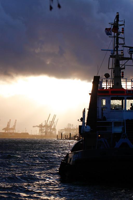 Schlepper in Hamburg bei Gegenlicht