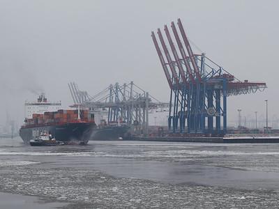 Containerschiff vor Athabaskakai Hamburg in Schwarzweiß