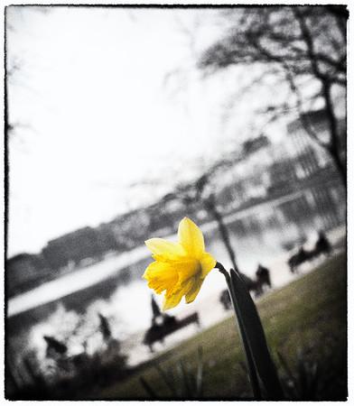 20110330-_MG_4990-p
