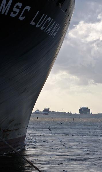 Containerschiff auf der Elbe Hochkant Hamburg mit weiteren Schiffen