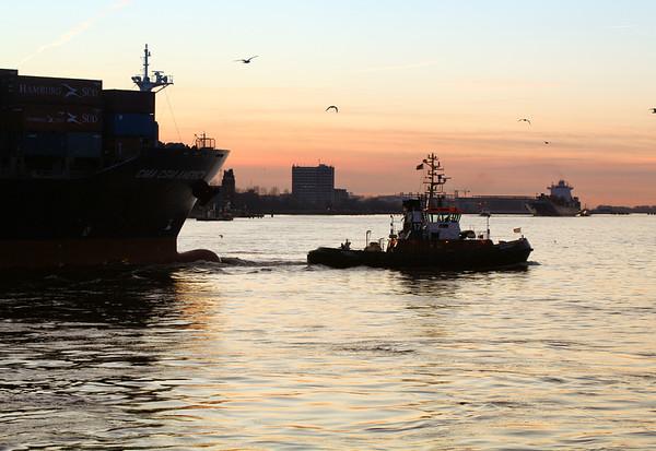 Schlepperbugsier 17 im Abendlicht vor Containerschiff Hamburg