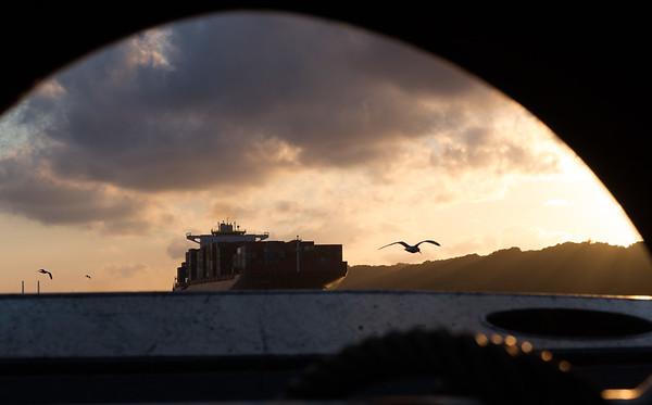 Containerschiff gesehen durch den Schleppbock Bugsier 5