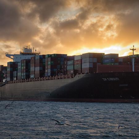 Containerschiff auf der Elbe bei Sonnenuntergang in Hamburg