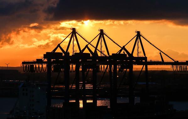 Containerkräne Athabaskakai im Gegenlicht mit tief stehender Sonne Hamburg