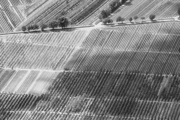 Luftbild Baumschulen