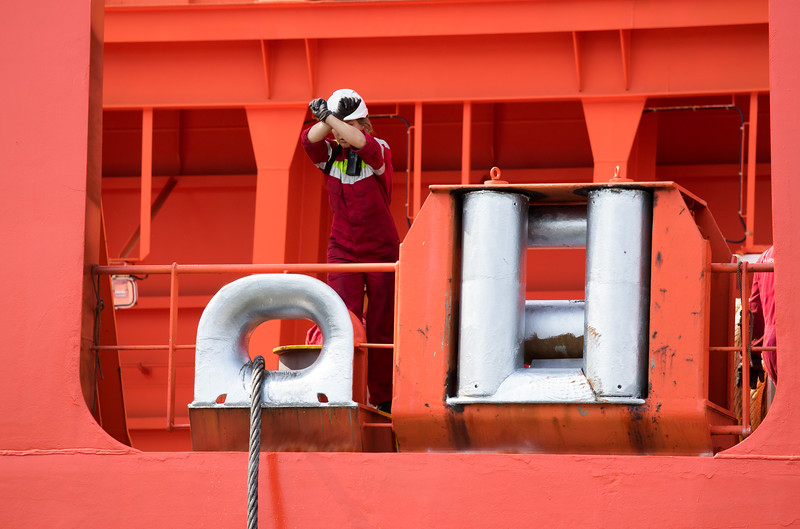 Matrose zeigt Leine fest dem Schlepper im Hamburger Hafen