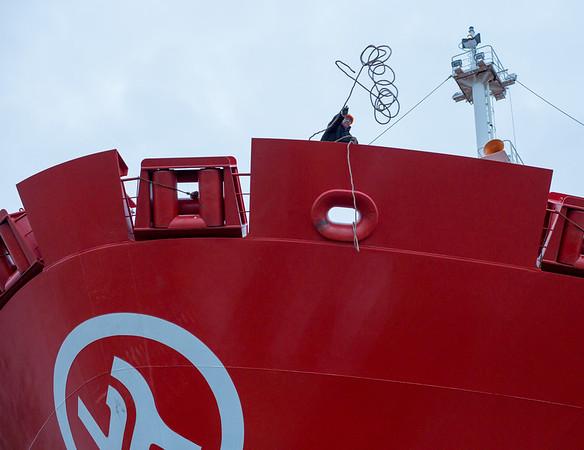 Containerschiff Bug in Hamburg die Wurfleine kommt zum Schlepper