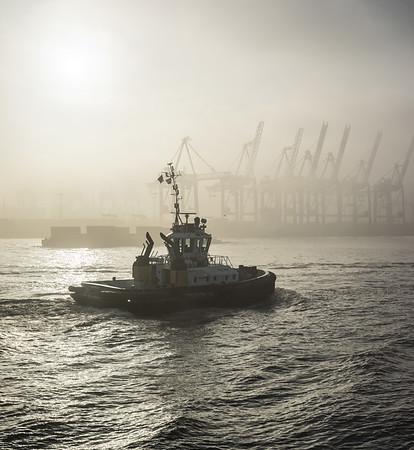 Hamburger Schlepper auf der Elbe in Hamburg bei Nebel