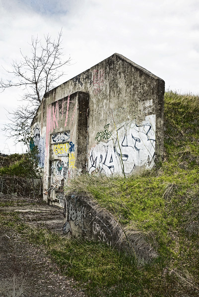 A Bunker Within the Landscape