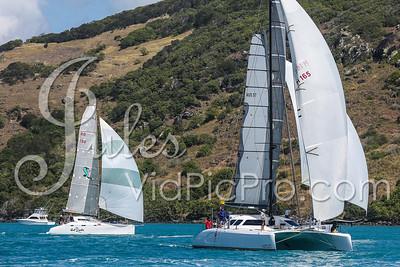 Hammo D2 Multis Jules VidPicPro com-6816