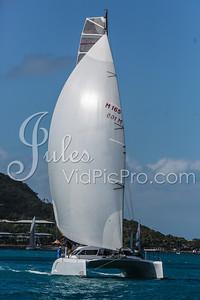 Hammo D2 Multis Jules VidPicPro com-6829