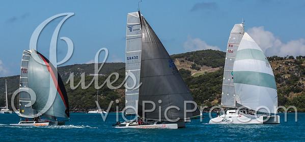 Hammo D2 Multis Jules VidPicPro com-6826