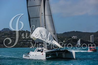 Hammo D2 Multis Jules VidPicPro com-6856