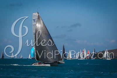 Hammo D2 Multis Jules VidPicPro com-6823