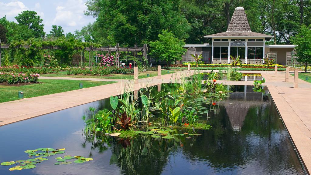 Hendrie Park (Rose Garden) - PaulTavares