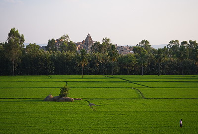 Paddy fields and temples
