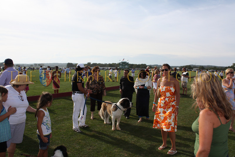 Guests on the field