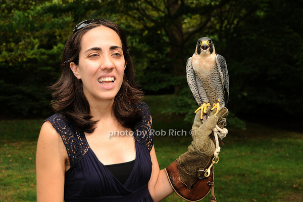 Isabel Fernandez, Striker (Perrigrin Falcon)<br /> photo by Rob Rich © 2010 robwayne1@aol.com 516-676-3939