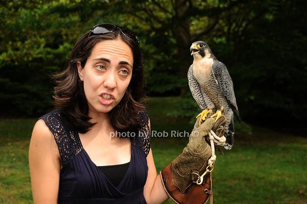Isabel Fernandez, Striker (Perrigrin Falcon)<br /> photo by Rob Rich © 2010 robwayne1@aol.com 516-676-3939