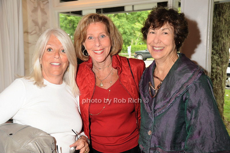 Ellen Krass,Susan Solomon ,Leslie Hillel