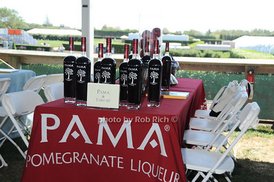 PAMA  table photo by Rob Rich © 2010 robwayne1@aol.com 516-676-3939
