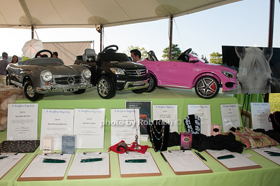 Silent auction items photo by D.Gonzalez for Rob Rich/SocietyAllure.com ©2017 robrich101@gmail.com 516-676-3939