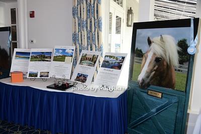 CTREE Horses Healing Lives Benefit