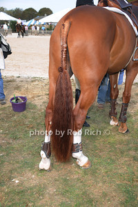 Custom horsetail braiding at  the Hampton Classic Horseshow in Bridgehampton (September 1, 2011)