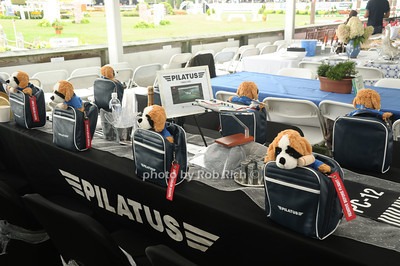 Pilatus table photo by Rob Rich/SocietyAllure.com © 2013 robwayne1@aol.com 516-676-3939