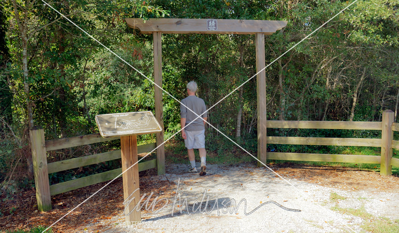 Mcleod Trail 2380