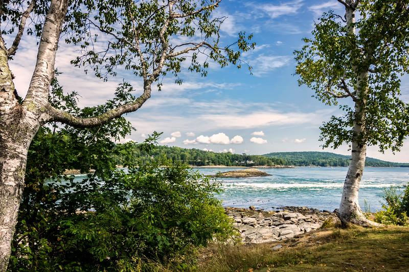 Reversing Tidal Falls in Hancock, Maine