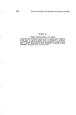 A general revision of the Palaemonidae (Crustacea decapoda natantia) of the Americas. 1. The subfamilies Euryrhynchinae and Pontoniinae