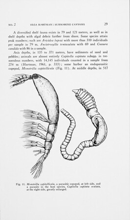 pt. 2. Biology